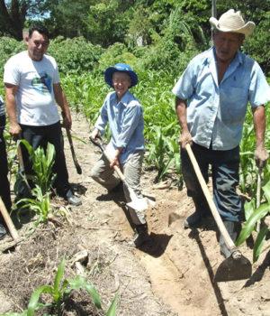 Choosing fertile ground for hope
